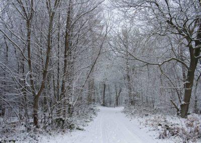 omgeving-sneeuw1