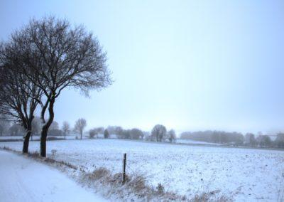 omgeving-sneeuw2