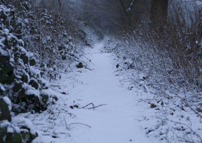 omgeving-sneeuw5