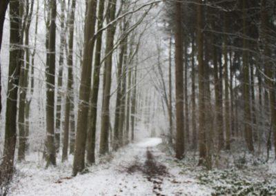 omgeving-sneeuw7