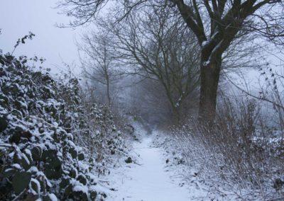 omgeving-sneeuw8