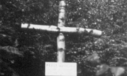 Amerikaanse Thunderbold en Britse Halifax neergestort in Mechelen